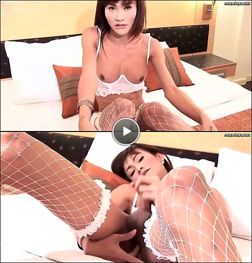 xxx asian ladyboy video